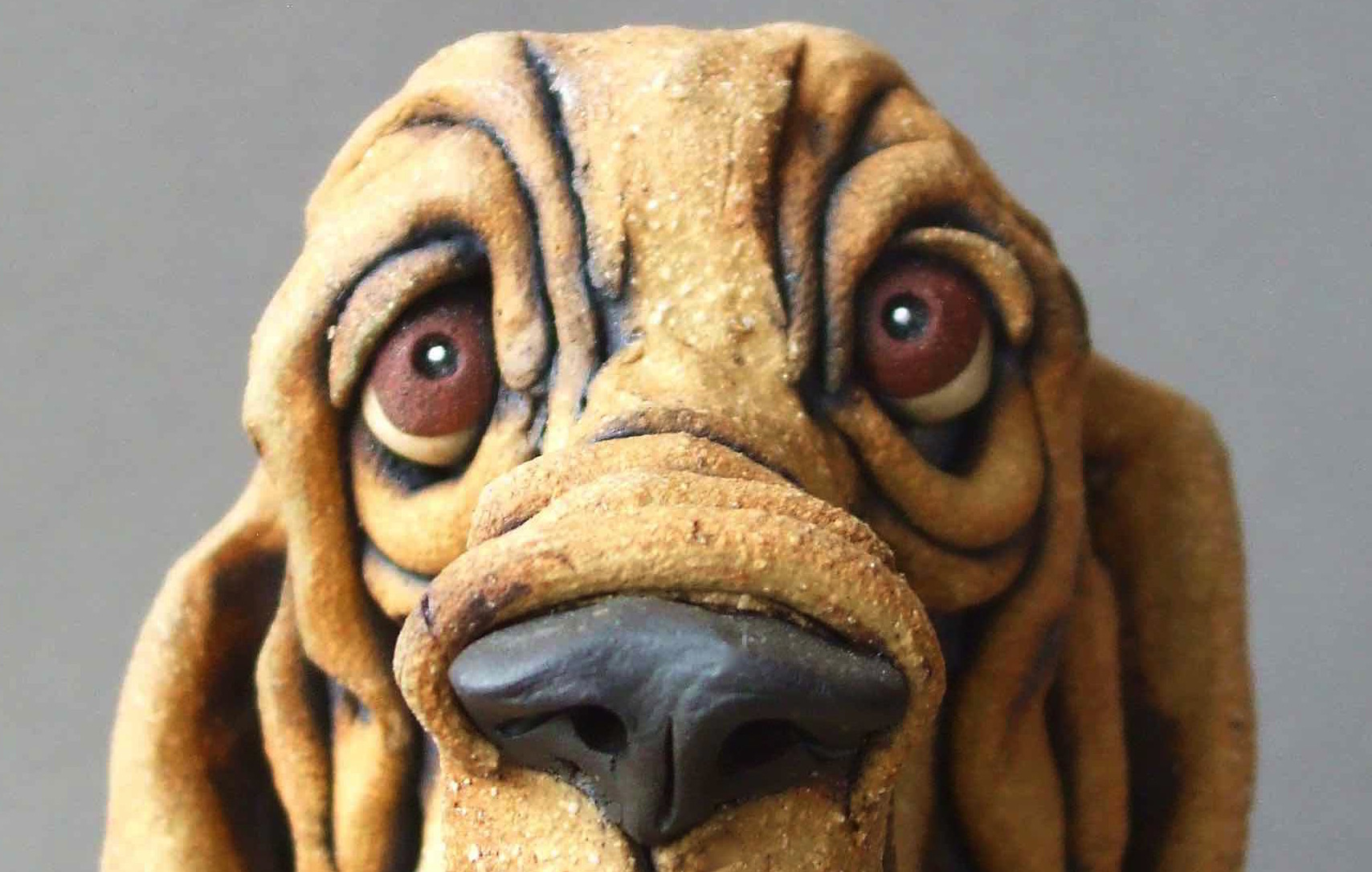 Bloodhound Eyes